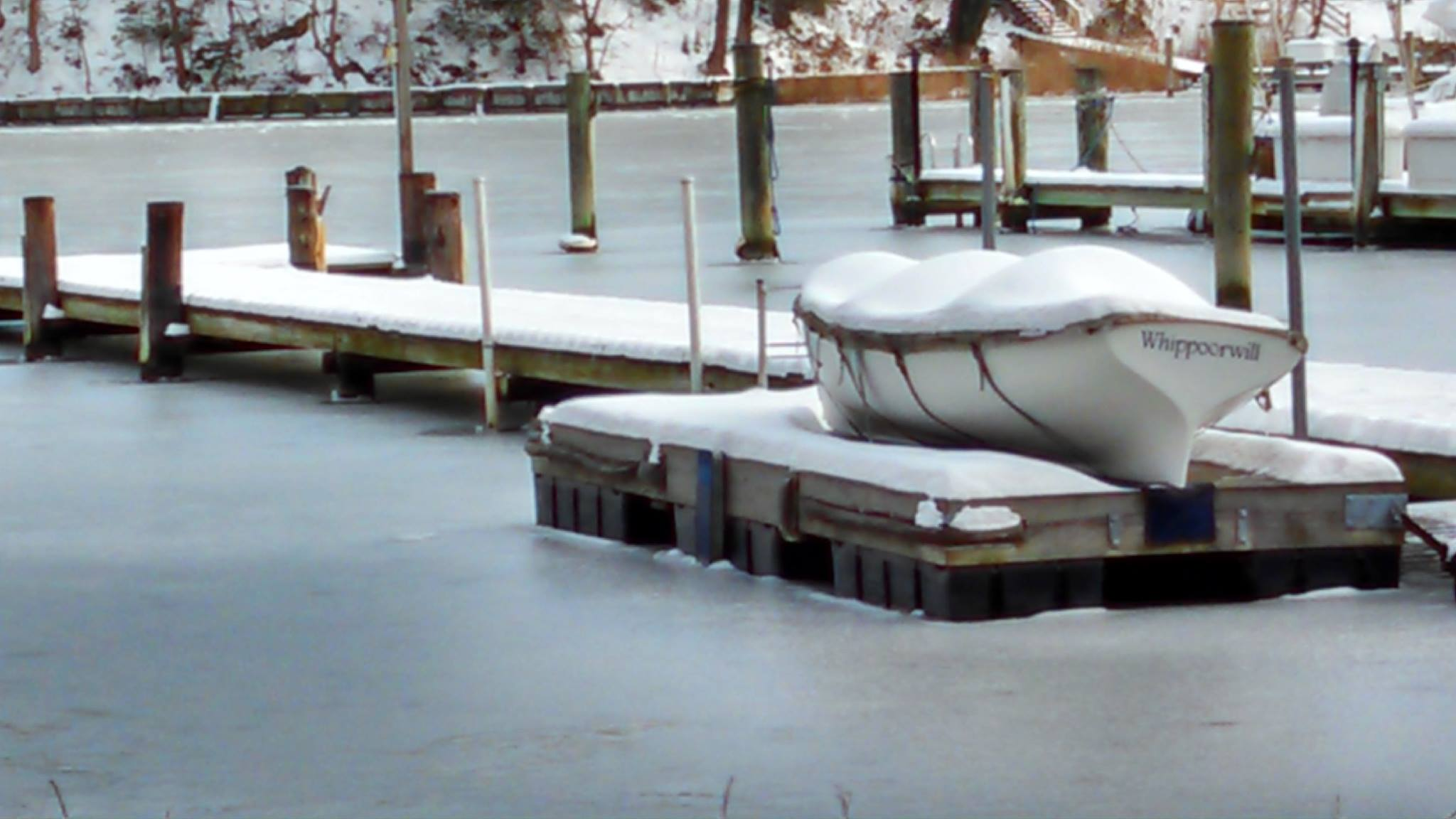 Whippoorwill on ice